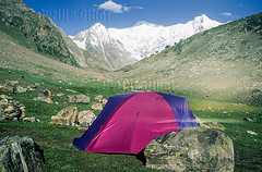 Camping tent in front of Nanga Parbat (elevation of 8,126 metres, or 26,660 ft), Gilgit Baltistan, Pakistan (Cyrille Gibot) Tags: travel pakistan mountain snow mountains color colour horizontal landscape outdoors asia meadow nobody tent snowcapped karakoram himalaya himalayan nangaparbat eightthousander gilgitbaltistan
