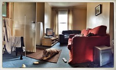 Front Rooms #11 (Mistapiggeh) Tags: autostitch dog tv flat livingroom sofa frontroom washing staffordshireterrier iphone4s snapseed