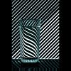 Glass Zebra (Gee 70) Tags: abstract water glass nikon refraction nikond90 artistsoftheyear artistoftheyearlevel3 artistsoftheyearlevel2 artistoftheyearlevel4 artistsoftheyearlevel6 artistoftheyearlevel5 artistsoftheyearlevel7 glasszebra
