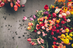 Tulips at the market (artchang) Tags: sanfrancisco flowers tulips farmers market ferrybuilding