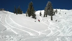 2013-03-07_09-43-16_382 (MtHoodMeadows) Tags: snow bluebird mthoodmeadows newsnow powdergallery