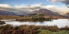 Pine Island, Derryclare, Connemara (linda_mcnulty) Tags: autumn trees ireland lake mountains galway water landscape island peaceful pines connemara maam conamara