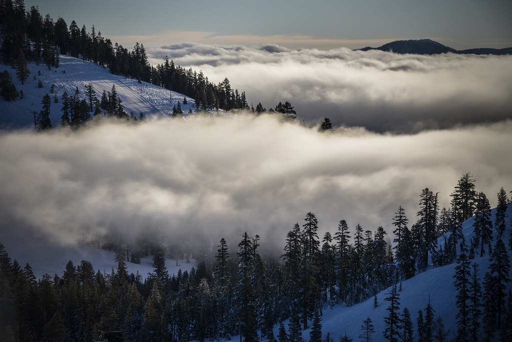 Alpine Meadows with a layer of fog