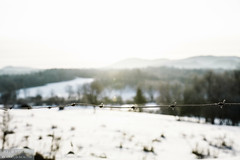 The minute you look back it hits you (dina bennett) Tags: morning winter snow nature metal fence landscape wire bokeh country highwater muted townships dinabennett