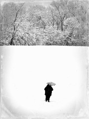 Lost (Forsaken Fotos) Tags: snow cold abandoned wet lost alone snowstorm forgotten lonely blacknwhite flickraward hopelessconfused