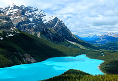 Peyto Lake Blue (Cole Chase Photography) Tags: canada canon landscape rockies turquoise canadian banff albertacanada banffnationalpark t3i peytolake icefieldsparkway canadianrockies turquoiselake turquoisewater