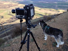 400mm 4x5 Speed Graphic Setup (Ryan McGinty) Tags: washington palouse steptoe ryanmcginty 4x5setup happyhusky