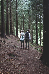 The Babes in the Wood (Samara May Knight) Tags: wood trees boy two cold green girl dark lost alone nursery babes fancy tall rhyme narrative