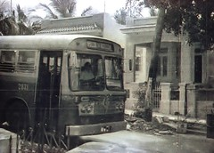 EMPRESA OMNIBUS DE LA HABANA, Ruta 90, No. 2831 (ROGALI) Tags: bus cuba 1975 olympic habana omnibus leyland guagua mcw britishleyland britishbus marianao leylandbus cubanbus ruta90 el453 empresaomnibusdelahabana guaguascubanas