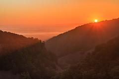 Naturen vaknar (MagnusBengtsson) Tags: landskap morgon natur skäralid skåne soluppgång sverige fs160911 fotosondag