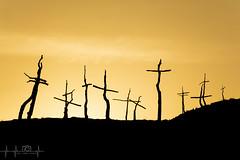 """Atardecer """"Bosc de les Creus"""" (borjamuro) Tags: creu cruz cross bosque bosc forest fire incendio incendi fuego foc marc bombero fireguard fireman barcelona montserrat espana espaa espanya catalunya cataluna catalua catalonia nikon d7100 7100 bn bw"""