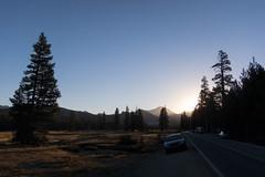 IMG_3442 (dangerismycat) Tags: yosemitenationalpark california mtdana tuolumnemeadows sunrise