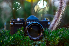 Super Multi Coated Takumar 150mm f/4 (Lens a Lot) Tags: super multi coated takumar 150mm f4 1971   6 blades iris m42 lenspicture made with mmz helios 442   58mm f2 zebra version 8 carl zeiss jena biotar russian copy manufactured ussr by minsk mechanical factory