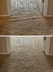 25 Carpet stretching in the hallway in front of the bedroom Austin Round Rock Cedar Park Manor Bee Cave San Marcos (Carpet Repair) Tags: austincarpetrepair cedarparkcarpetrepair roundrockcarpetrepair pflugervillecarpetrepair sanmarcoscarpetrepair westlakehillscarpetrepair wimberleycarpetrepair suncitycarpetrepair driftwoodcarpetrepair georgetowncarpetrepair drippingspringscarpetrepair kylecarpetrepair laketraviscarpetrepair lakewaycarpetrepair leandercarpetrepair manorcarpetrepair onioncreekcarpetrepair bartoncreekcarpetrepair budacarpetrepair carpetrepair repaircarpeting carpetrepaircost carpetrepairservice carpetrepaircompanies professionalcarpetrepair carpetdamagerepair carpetrepairspecialist repairingcarpetdamage cancarpetberepaired canyourepaircarpet carpetrepairaustintx fixingcarpet carpetfixing fixcarpet stretching wrinkles loose restretching stretch restretch refasten carpet buckling services carpetstretching carpetstretchingservices carpetstretchingservice carpetwrinkles stretchingcarpet stretchingcarpets loosecarpet stretchedcarpet carpetrestretching stretchcarpet stretchcarpets carpetstretch carpetstretched carpetrestretch restretchcarpet restretchingcarpet carpetrestretchingservices carpetrepairstretching carpetstretchingcost stretchingcarpetcost costtostretchcarpet powerstretchingcarpet stretchingacarpet refastencarpet repaircarpet carpetrepairandstretching