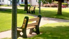 Benches at Memorial Park-HBM. (Maenette1) Tags: benches memorialpark menominee uppermichigan happybenchmonday