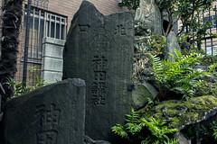 lasting impression (edwardpalmquist) Tags: tokyo japan travel city street urban plant tree moss nature outdoors rock stone