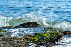 Wave (@Dpalichorov) Tags: nikond3200 nikon d3200 action wave water sea ocean beach seaside coast rock stone bulgaria bqla byala   alga splash plant nature landscape ngc autofocus nikonflickraward outdoor shore drops rightmoment right moment