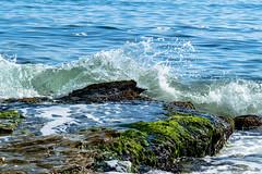Wave (@Dpalichorov) Tags: nikond3200 nikon d3200 action wave water sea ocean beach seaside coast rock stone bulgaria bqla byala   alga splash plant nature landscape ngc autofocus nikonflickraward outdoor shore drops rightmoment right moment