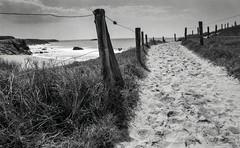 Quiberon, B&W, 1 (Patrick.Raymond (3M views)) Tags: bretagne quiberon morbihan cote sauvage pl plage mer argentique tmax nikon expressyourself beautifulphoto