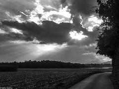 the word of god? (picturesbywalther) Tags: sky himmel wetter weather nature landscape landschaft feld field wolken cloud sonne sun herbst autumn outdoor god gott word wort