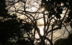 sri_lanka_trincomalee_20 (Kudosmedia) Tags: sri lanka trincomalee nelson fort fredrick harbour temple coast beach deer monkey legend fortress asia claringbold trevor
