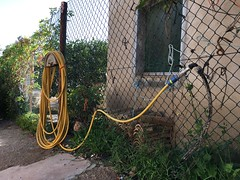 (emed0s) Tags: hose