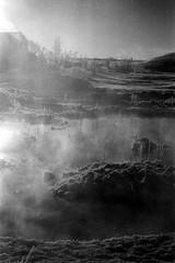 fumignes (asketoner) Tags: myvatn snow winter iceland smoke smog grass hot water lake landscape