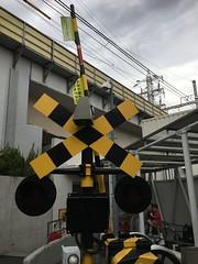 IMG_3529 (macco) Tags: iphone 6s    kanagawa kawasaki tokyu  train