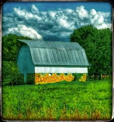 Autumn in the Ozarks... (Sherrianne100) Tags: countryside rural rockbarn oldbarn barn ozarks missouri