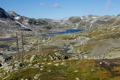 IMG_2285 Middyr på Haukelifjell (JarleB) Tags: haukelifjell røldal fjell høyfjellet hardanger hordaland water tur fjelltur høst autumn september middyr ulevå haukeliseter haukeli mountain