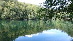 Reflections in the Lake (hikmetozgozen) Tags: lake forest yedigller bolu