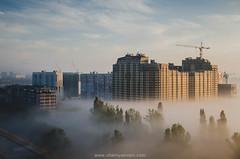 DSC_6773_mini (Maria Chernyaeva) Tags: krasnodar sunrise foggy