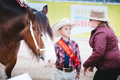 Royal Melbourne Show 2016 (tyroga) Tags: clydesdale horse jamestroi tyroga juniors leading royalmelbourneshow