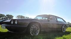 Ultra-rare: XJ-S based Arden AJ3 shooting brake (Pim Stouten) Tags: arden british car auto wagen pkw vhicule macchina burgzelem v12 jag jaguar xjs xj27 shootingbrake estate aj3