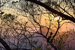 Cristo Redentor (crismdl) Tags: sunset pordosol prdosol rio rio2016 riodejaneiro errejota rj cristo cristoredentor urca podeaucar
