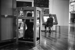 Brisbane - QAG (alessandro.soro) Tags: brisbane queensland art gallery statue screen pictures paintings museum indoors film push ilford fp4 ilfosol3
