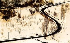 Road (gianclaudio.curia) Tags: bianconero blackwhite spatrizio strada neve astratto rodinal agfa kodaktrix kodak