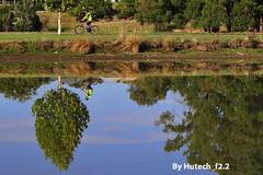Riding High at Sumsion Lake II (Hutech_f2.2 Half a Million+ Views!!!) Tags: trees sky art bicycle reflections nikon 85mm australia rider wodonga f14g d700 sumsionlake