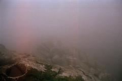 sintra#2 (the mirror closes the universe) Tags: winter film fog forest nebel sintra grain tudor wald brouillard fort