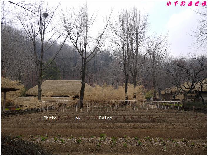 0403韓國民俗村 (28).JPG