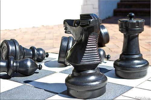 Chess 4236