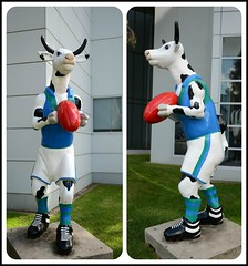 It's Only A Game..... (PhotosbyDi) Tags: silly football nikon funny cows statues australia victoria shepparton d600
