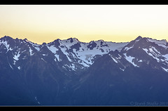 Hurricane Ridge (Jayesh Modha) Tags: mountains olympicnationalpark hurricaneridge snowonmountains mountainsnow nikond90 washingtonattractions 18105mmf3556gvr nikon18105mmvrlens nikon18105vrlens jayeshmodha jayeshnikond90 jayeshmodhanikond90 hurricaneridgeportangeleswa nikon18105mmf3656gvrlens nikonrawformat