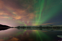 Iceland's Northern Lights (baddoguy) Tags: city trip travel light sky cloud sun mountain reflection green nature star iceland tour icon images arctic snowcapped aurora getty iconic highlight northernlights auroraborealis gettyimages naturalphenomenon gettyimagesstock