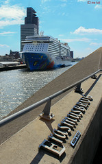 The view (martijntuit) Tags: city bridge cruise blue haven max holland netherlands america de boot rotterdam nederland line norwegian peter cruiseship cruises erasmusbrug breakaway ncl zwaan cruiship wilhelminapier