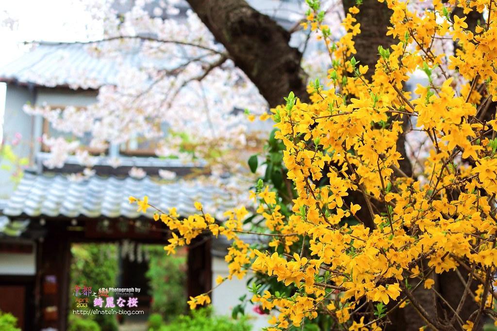 2013-04-03-10h22m53IMG_0613