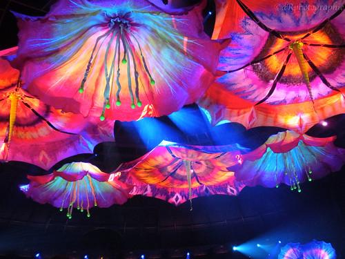 Le Rêve, Cirque du Soleil - Las Vegas '10