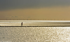 Out Runnin' (ShootingMrSmith) Tags: light sea lake seascape water silhouette marina landscape coast filter contrejour marinelake wirral westkirby merseyside leefilter