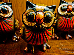 Owl Always Love You (Rachel_Ricci) Tags: bird birds animal statue fly eyes colorful feathers statues owl owls