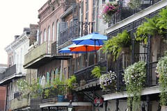 Iconic (robwilkerson) Tags: vacation facade umbrella neworleans frenchquarter vegetation lush